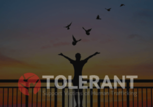TOLERANT – 3rd Newsletter